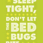 Bed Bugs Begone: Best Anti-Bedbug Tips