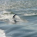 Surfing – in Montreal?