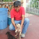 Saving the Abandoned Animals of Zihuatanejo