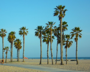 Strolling the beach in Santa Barbara feels as exotic as any tropical locale.